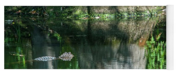 Alligator Canal Yoga Mat