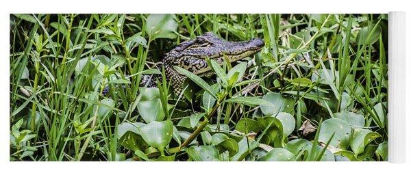 Alligator In Duck Weed, Louisiana Yoga Mat