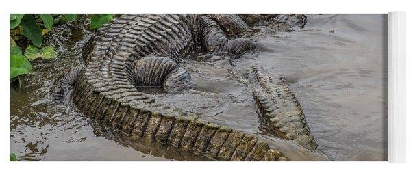Alligators Courting Yoga Mat