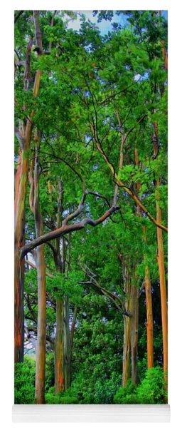 Amazing Rainbow Eucalyptus Yoga Mat