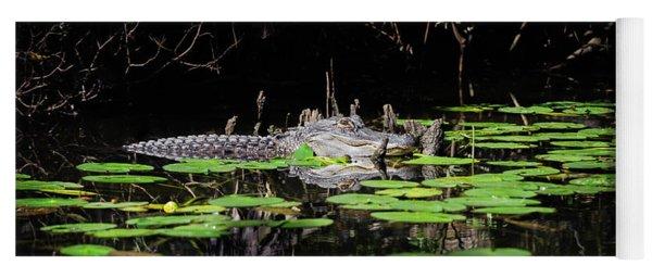 American Alligator In South Walton Florida Yoga Mat