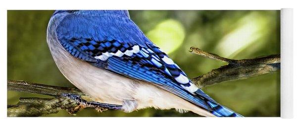 Blue Jay Bokeh Yoga Mat