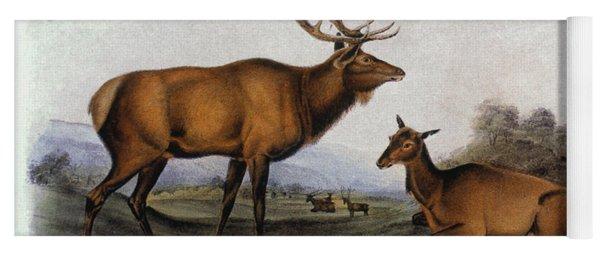 American Elk, 1846 Yoga Mat