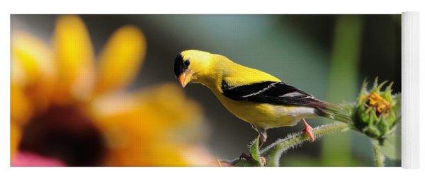American Goldfinch Yoga Mat