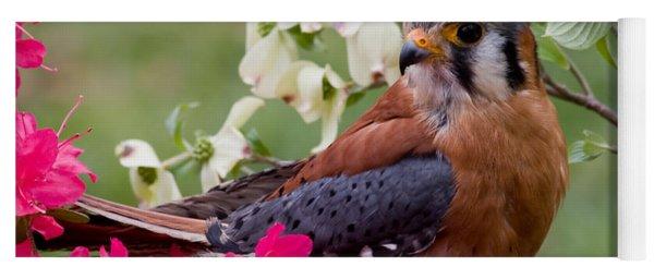 American Kestrel In The Springtime Yoga Mat