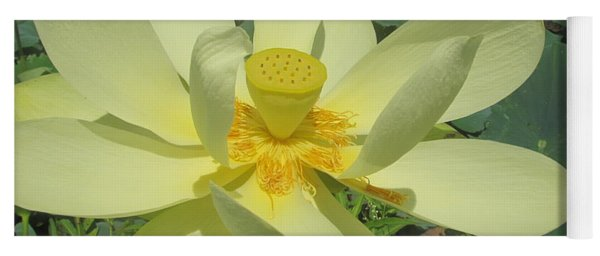 American Lotus Yoga Mat