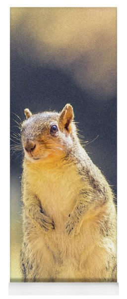 American Red Squirrel Yoga Mat