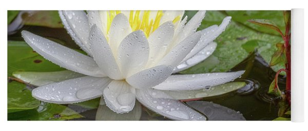 American White Water Lily Yoga Mat