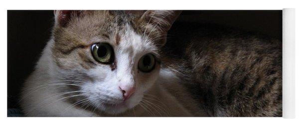 Ammani The Cat Yoga Mat