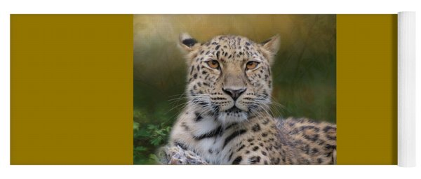 Yoga Mat featuring the photograph Amur Leopard by Patti Deters