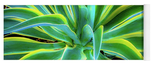 An Agave In Color  Yoga Mat