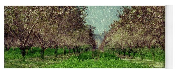 An Orchard In Blossom In The Eila Valley Yoga Mat