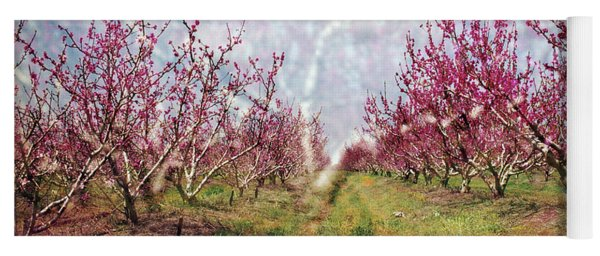 An Orchard In Blossom In The Golan Heights Yoga Mat