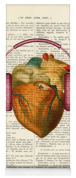 Anatomical Heart And Headphonesin Color  Yoga Mat