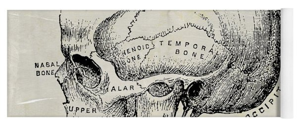 Anatomical Skull Medical Art Yoga Mat