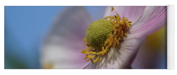 Anemone Tomentosa Close Up Yoga Mat