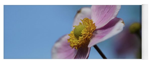 Anemone Tomentosa Flower Yoga Mat