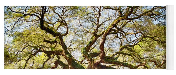 Angel Oak In Spring Yoga Mat