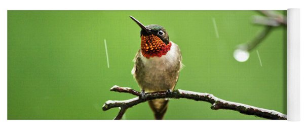 Another Rainy Day Hummingbird Yoga Mat