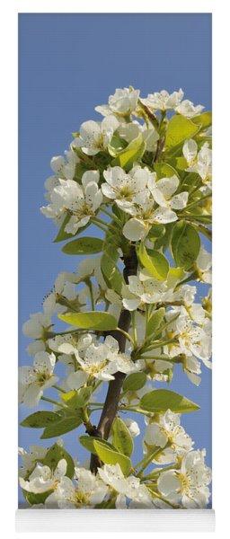 Apple Blossom In Spring Yoga Mat