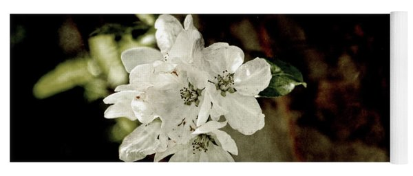 Apple Blossom Paper Yoga Mat