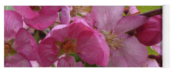 Apple Blossoms Yoga Mat