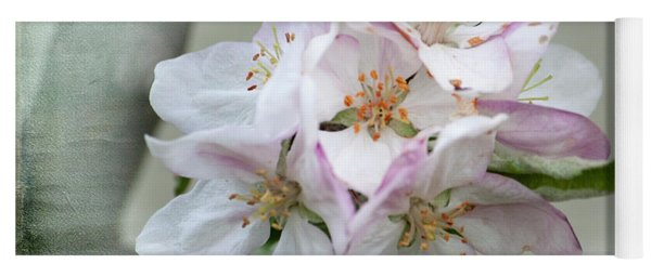 Apple Blossoms From My Hepburn Garden Yoga Mat
