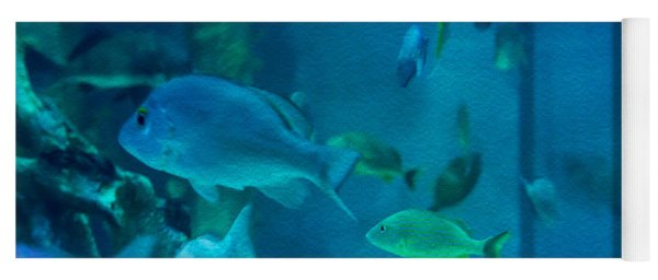 Aquarium View Yoga Mat