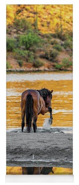 Arizona Wild Horse Playing In Water Yoga Mat