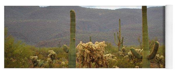 Arizona's Sonoran Desert  Yoga Mat