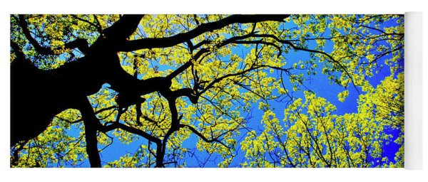 Artsy Tree Canopy Series, Early Spring - # 01 Yoga Mat
