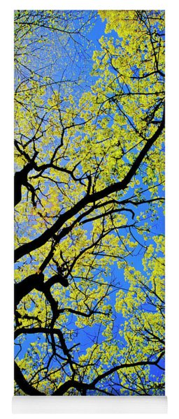 Artsy Tree Canopy Series, Early Spring - # 02 Yoga Mat