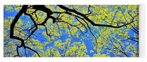 Artsy Tree Canopy Series, Early Spring - # 03 Yoga Mat