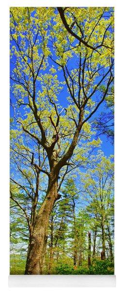 Artsy Tree Series, Early Spring - # 04 Yoga Mat