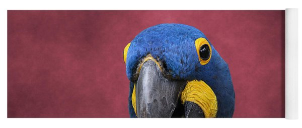 Cheeky Macaw Yoga Mat