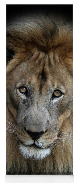 Sweet Male Lion Portrait Yoga Mat