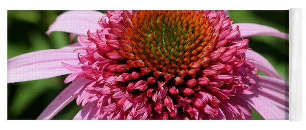 Pink Coneflower Close-up Yoga Mat