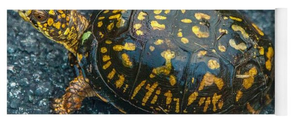 Turtle Yoga Mat