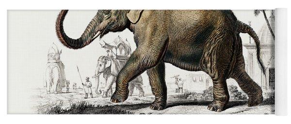 Asiatic Elephant - Elephas Maximus Indicus Yoga Mat