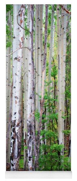 Aspen Grove In The White Mountains Yoga Mat
