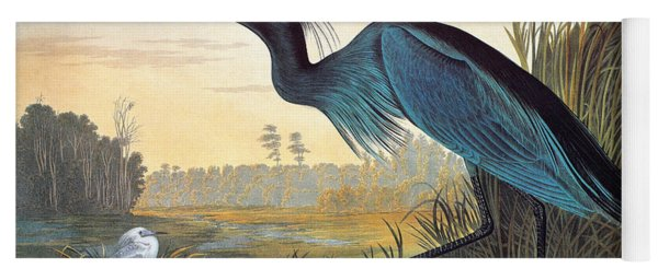 Little Blue Heron Yoga Mat