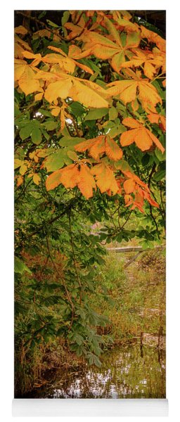 Autumn Along The Bog Burn Yoga Mat