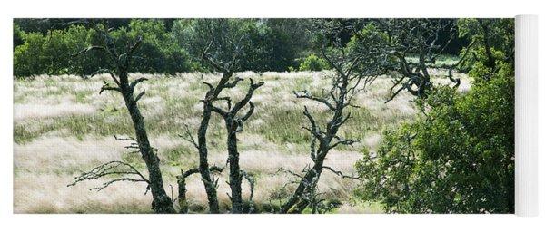 Autumn And Grass In Isle Of Skye, Uk Yoga Mat
