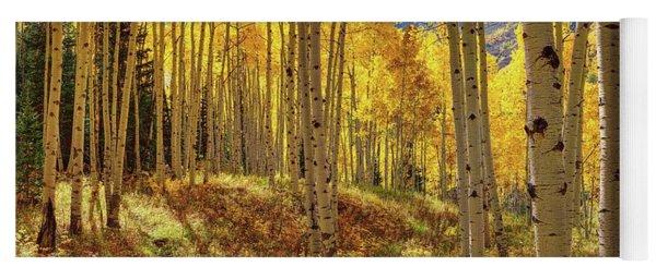 Autumn Aspen Forest Aspen Colorado Panorama Yoga Mat