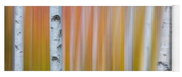 Autumn Birch Abstract Yoga Mat