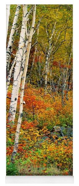 Autumn Birch Yoga Mat