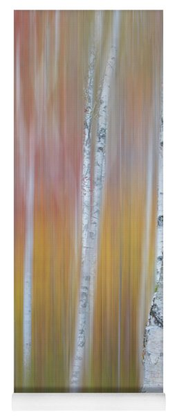 Autumn Birch Impressions Yoga Mat