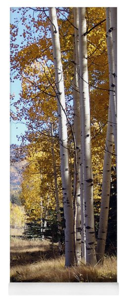 Autumn Chama New Mexico Yoga Mat