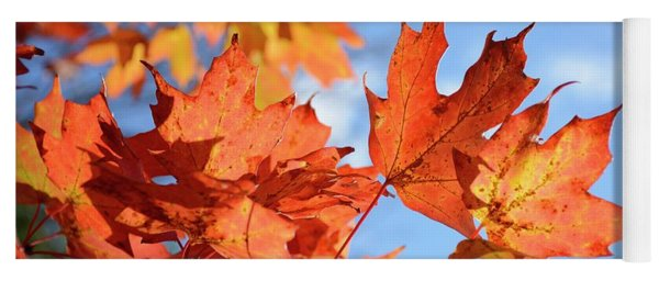 Yoga Mat featuring the photograph Autumn Colors 2 by Angie Tirado