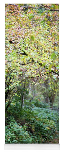 Autumn Colors In The Forest Yoga Mat